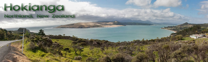 Google map of the Hokianga